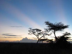Nairobi Kenya Sunset