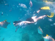 Superb Seychelles