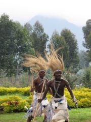 Volcano National Park Rwanda Gorilla Dancers