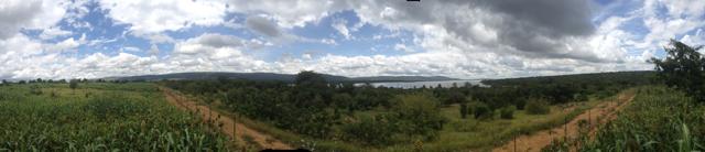 2014 Akagera South - 15