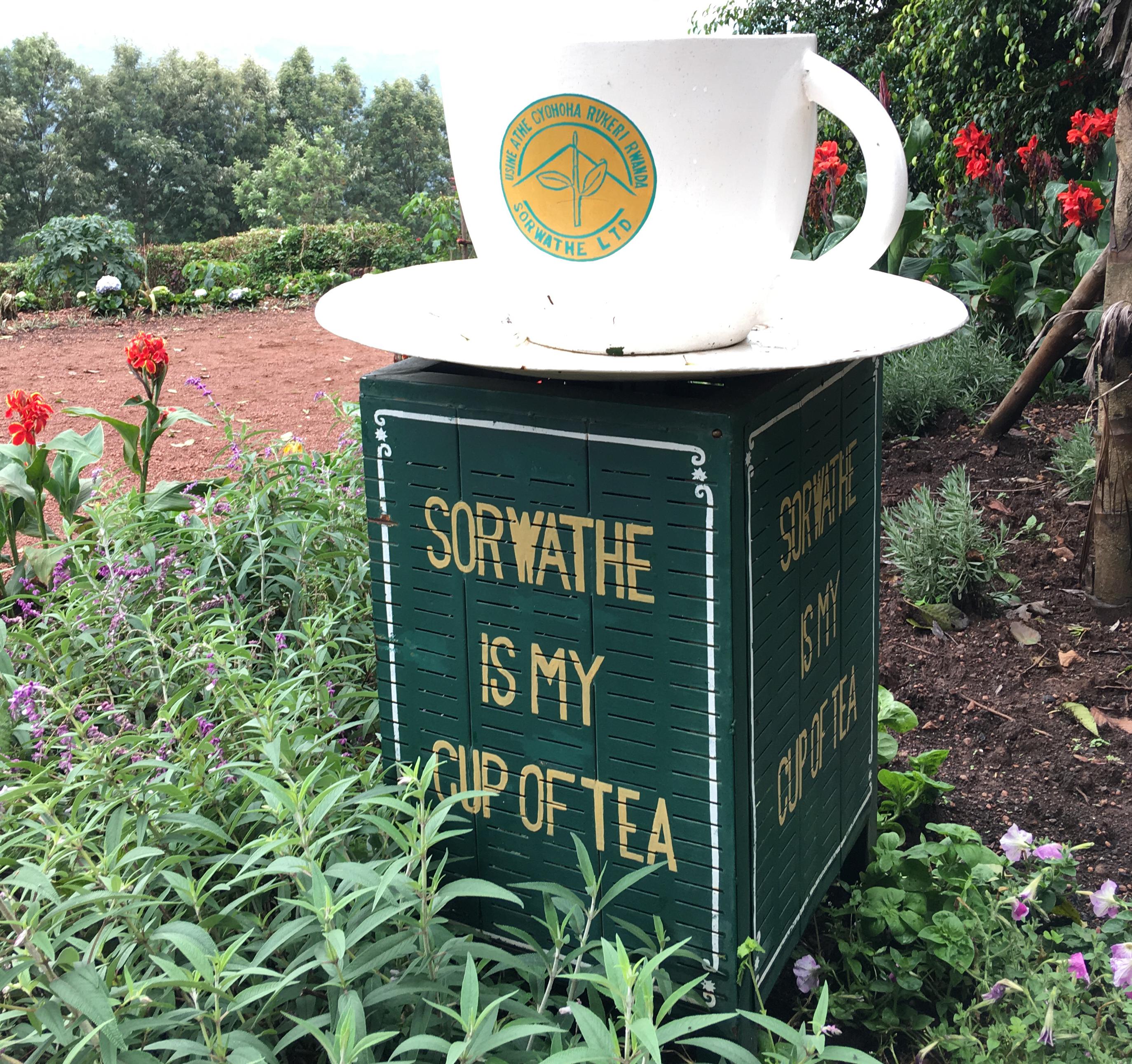 Sorwathe is my cup of tea